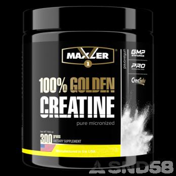 Maxler 100% Golden Micronized Creatine (Креатин моногидрат)