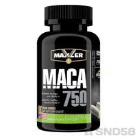 Maxler Maca (Спец преп.)