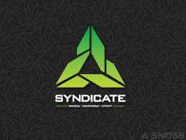 Футболка Syndicate